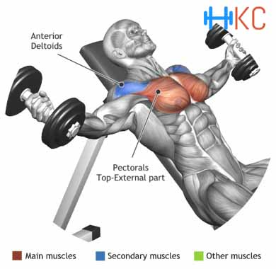 incline-dumbbell-flyes