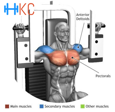How to perform pectoral machine or Butterfly Exercise ...