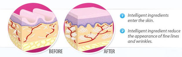 What-are-Phytoceramides