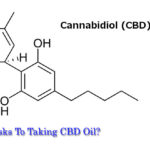 Are There Risks To Taking CBD Oil?