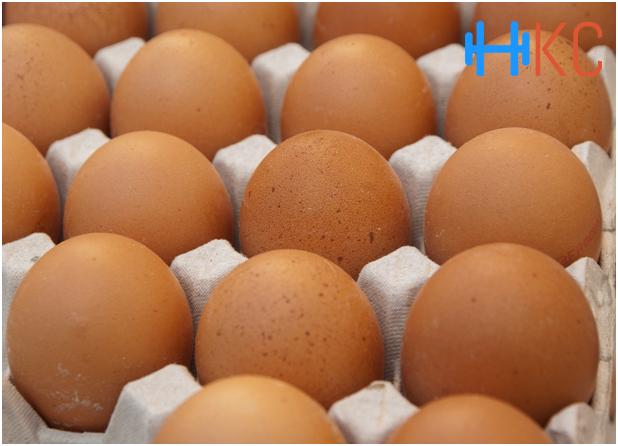 Best Foods for Muscle Building, Foods for Muscle Building,Eggs