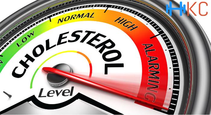 Balances Cholesterol