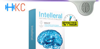 Intelleral Brain Review